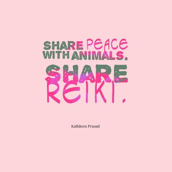 quotescoversharepeace