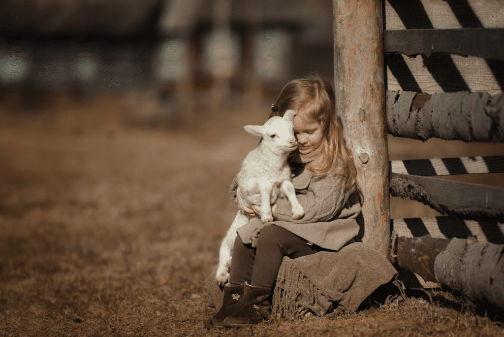a girl holding a baby lamb on a bench