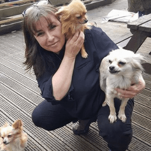 alison mckinnon with her dogs