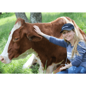 kathleen prasad with a cow