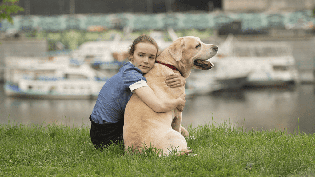 Preventing and Combating Compassion Fatigue: Animal Reiki for Animal Advocates